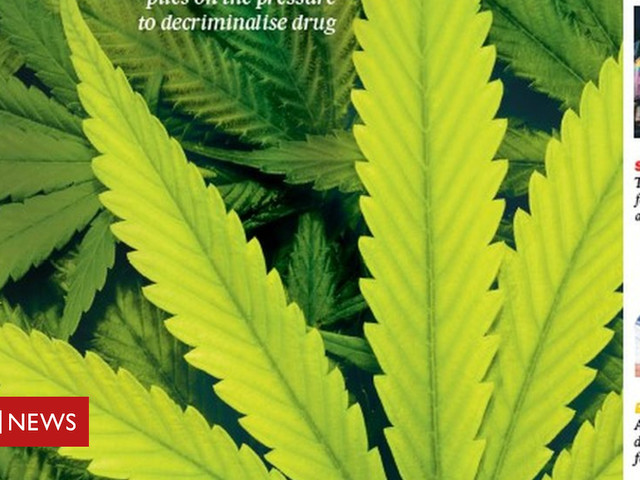 The papers: Cannabis under the spotlight