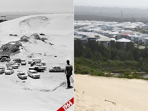 Cronulla then and now: How the suburb's iconic 15,000-year-old sand dunes are being destroyed