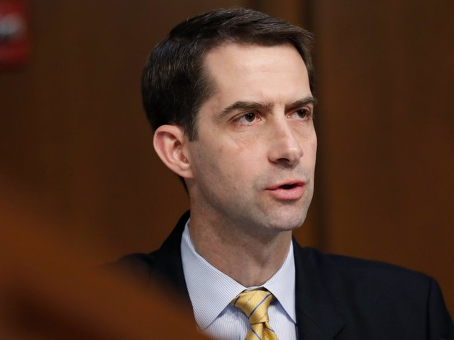 Intelligence veterans blast Tom Cotton as pro-torture, 'partisan,' and 'wholly unfit' to lead the CIA