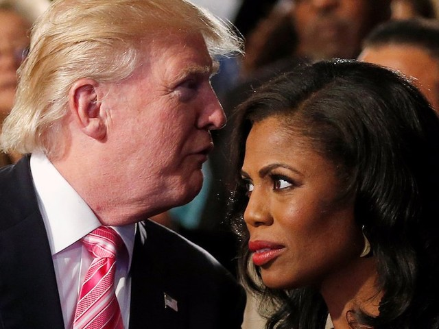 Omarosa Manigault says it was 'very lonely' working with White House staffers who 'had never worked with minorities'