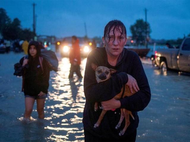 Don't Blame Houston's Lax Zoning for Harvey's Destruction