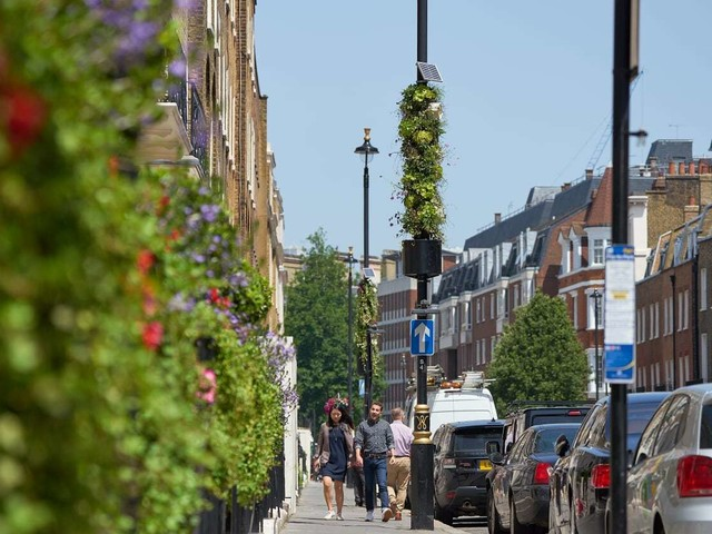 Street lamps are being covered in plants
