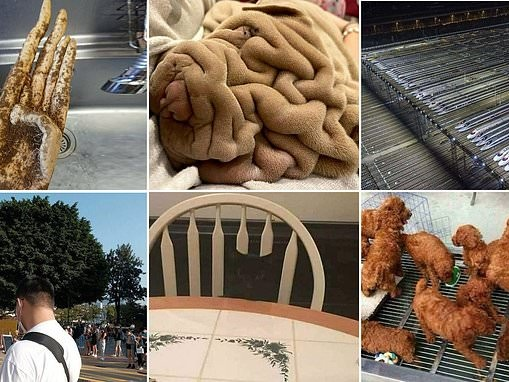 Misleading photos shared on social media look like totally different scenes