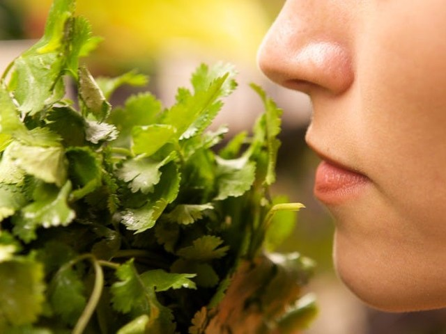 A lost sense of smell may be a far more common coronavirus symptom than previously thought, study finds