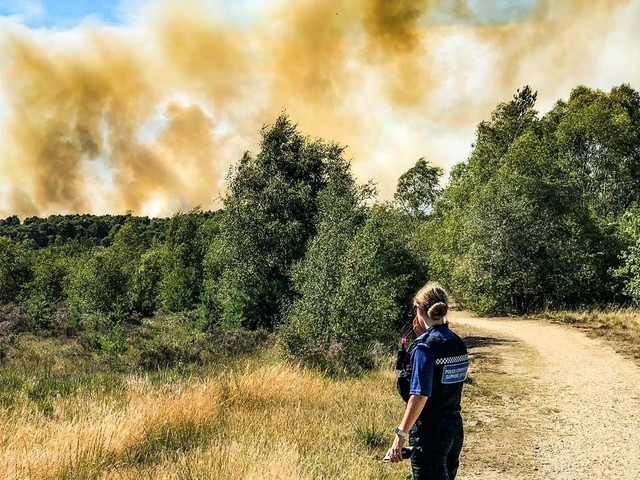 Fire crews make 'significant progress' on Chobham Common