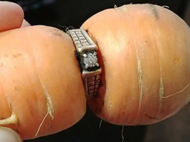 'It still fits': Diamond ring missing since 2004 turns up on garden carrot