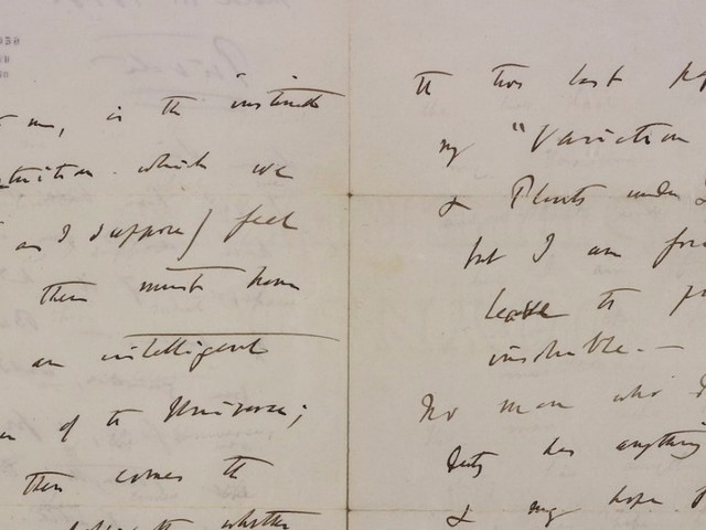 A private letter from Darwin detailing his doubts about God is up for auction — here's what he wrote