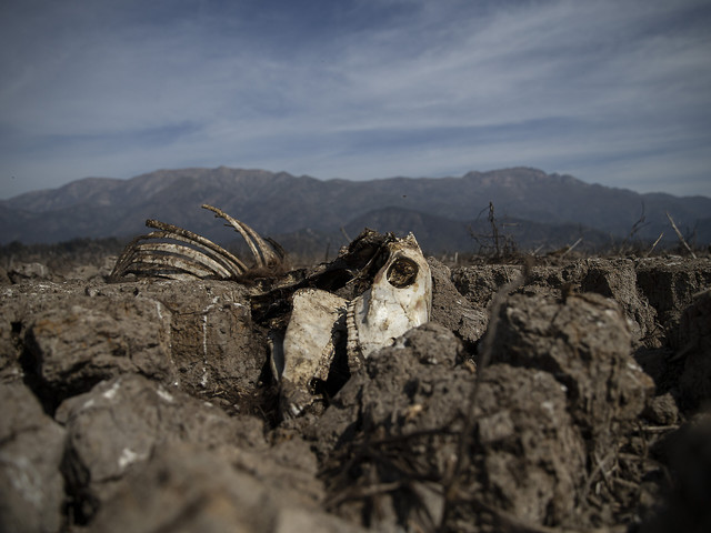 Worst drought in decades hits Chile capital and outskirts
