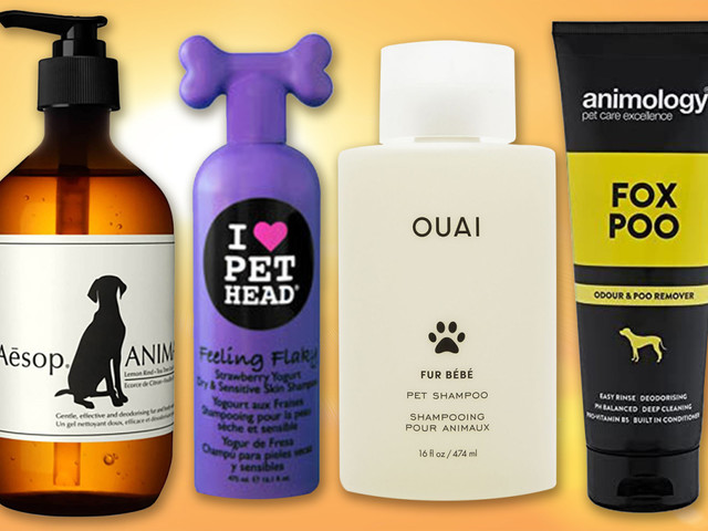 Best dog shampoos: the most safe and cleansing finds for your furry friends