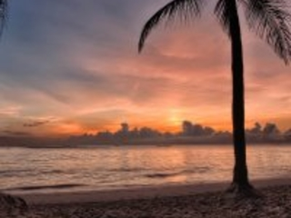 """Punta Cana hopes for """"big response"""" from US airlines"""