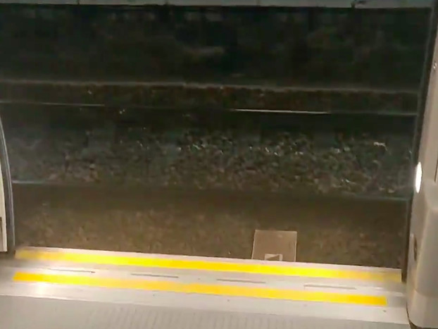 Crossrail Train Opens Doors On The Wrong Side At Stratford