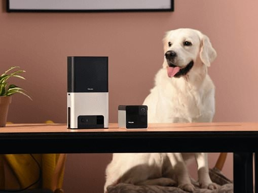 Petcube unveils new Alexa-enabled pet cameras at CES including $249 device that will fling treats