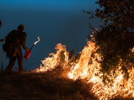 Fire experts prescribe Indigenous cultural burns to reduce wildfire risk in B.C.