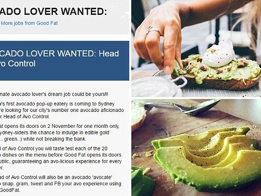 Australia's first avocado cafe seeks head of avo control