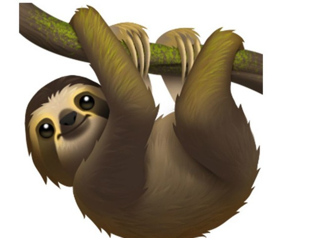 World Emoji Day: Apple reveals 59 new characters including sloth, sari and waffle