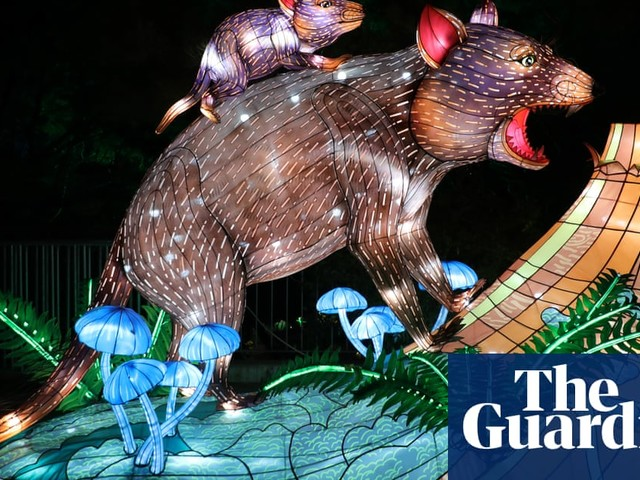 Art installation lights up Sydney's zoo – in pictures