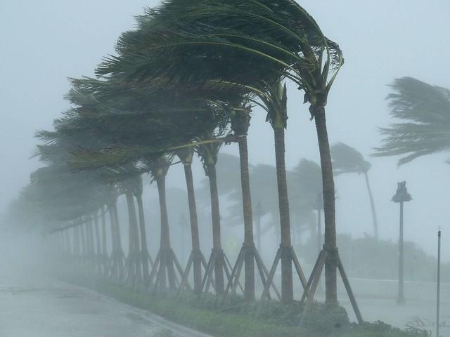Video: Hurricane Irma slams into Florida