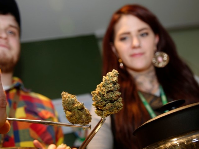 Colorado may become the first state to allow smoke-friendly marijuana clubs and 'tasting rooms'
