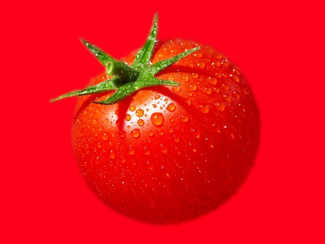 The juicy, painstaking quest to make tomatoes taste less awful