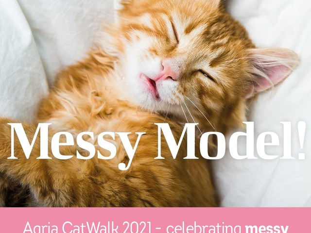 Agria CatWalk Competition: Messy Models