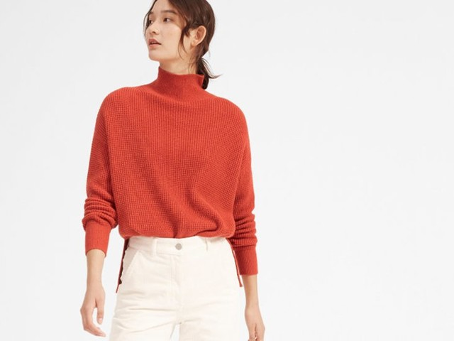 I rarely spend more than $100 on anything, but I dropped $155 on Everlane's cashmere turtleneck — and I don't regret it
