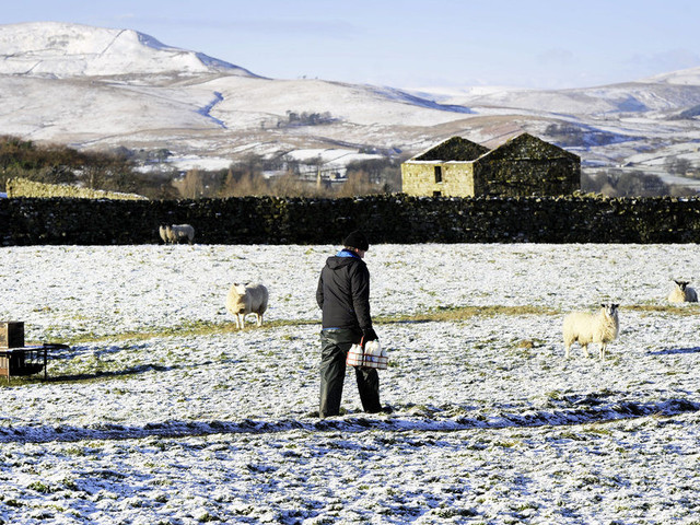 More Snow Forecast As Temperatures Plummet And Weather Warnings Remain In Place