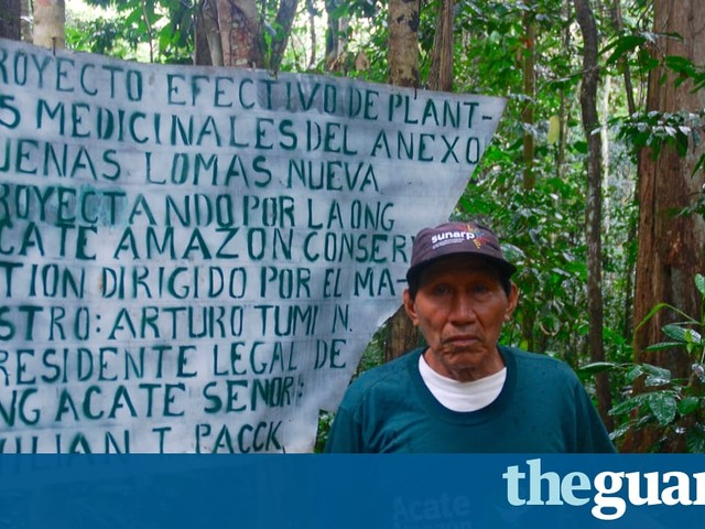 Amazon tribe saves plant lore with 'healing forests' and encyclopedia
