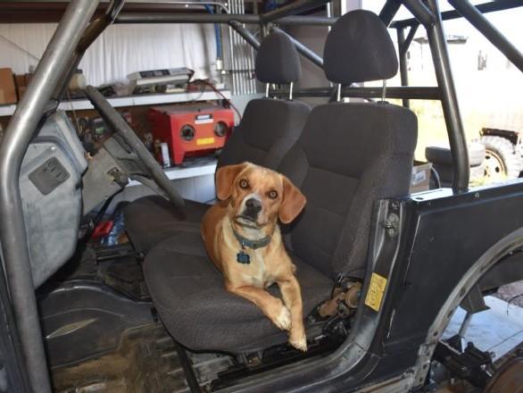 Junkyard Seat Swap