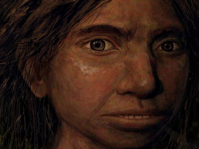 Ancient tools and DNA discovered in a Tibetan cave shed unprecedented light on humans' most enigmatic ancestor, the Denisovans
