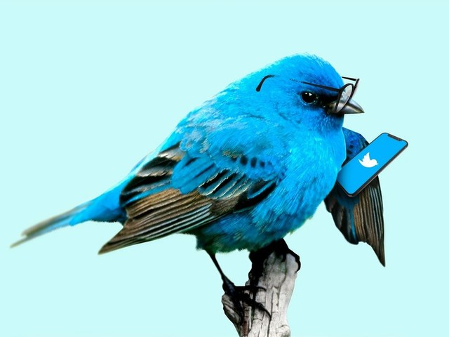 Twitter security flaw may have exposed your direct messages