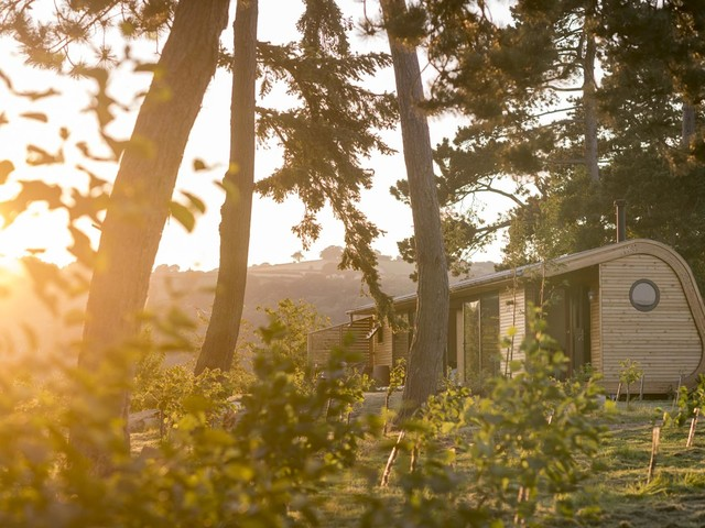 Cool stay of the week: luxury glamping pods in the Welsh woodlands