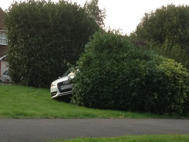 Mystery surrounds Audi found poking out of bush