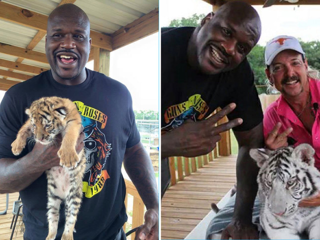 Shaquille O'Neal caught in Tiger King row as animal rights campaigners demand NBA legend cuts ties with zoo owner