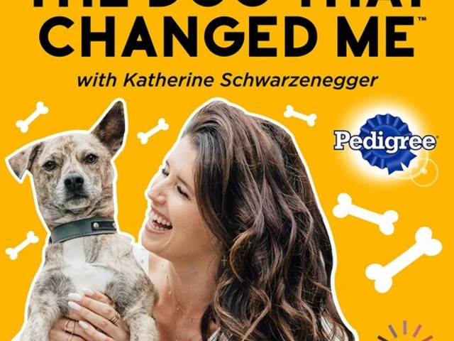 Katherine Schwarzenegger Launches New Podcast - The Dog That Changed Me