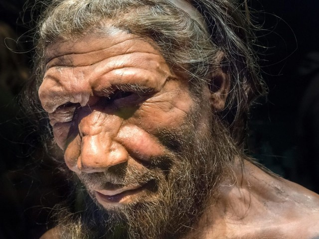 Ancient piece of string reveals Neanderthals from 40,000 years ago were as 'smart' as modern humans