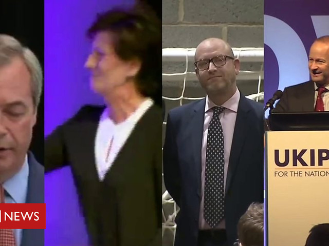 UKIP: Why have post-Farage party leaders not lasted?