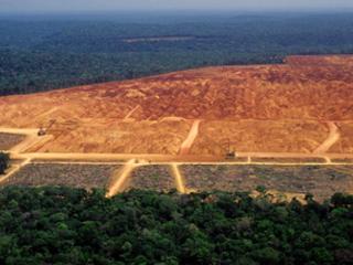 Could UK firms' threatened Brazil boycott trigger rethink on Amazon land-grab bill?