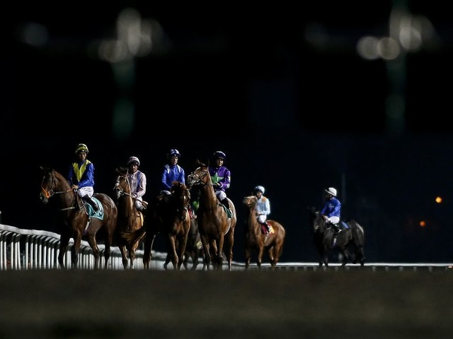 Horse racing tips: Best bets and nap selections for Tuesday, October 17 at Kempton, Huntingdon, Leicester and Worcester