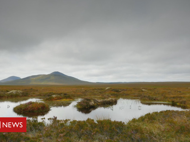 Funding pledge to protect Scotland's peatland