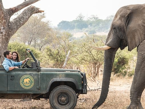 Netflix blockbuster starring Rob Lowe shows fight against foreign mining in Zambezi National Park