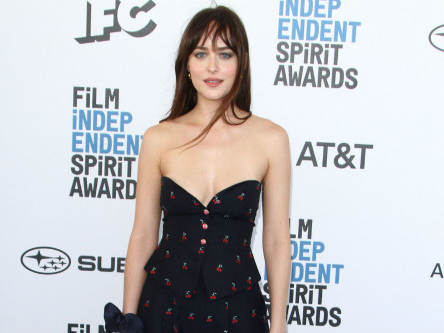 Dakota Johnson will be in therapy for 'the rest of her life'