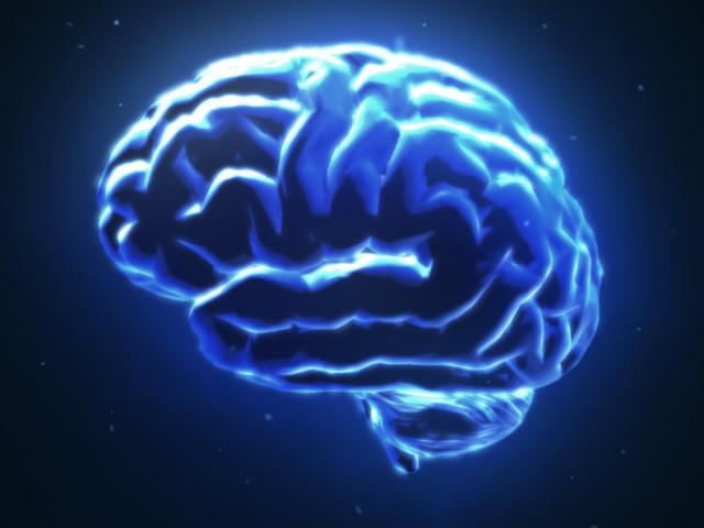 Epilepsy Symptoms, Diagnosis And Treatment Explained
