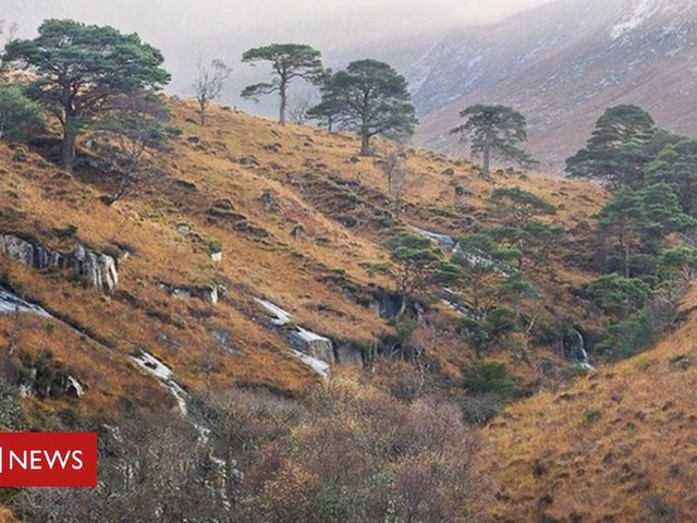 Councillors to review Glen Etive hydro plans