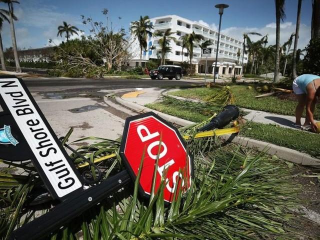 US hurricanes to drive demand, says Ashtead
