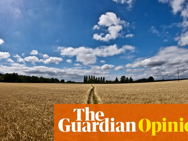 The invisible hand of the market won't protect our food or fields | Sue Pritchard