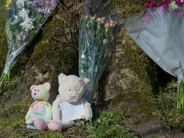 Trial hears of harrowing scene as bystanders try to save Emily Jones
