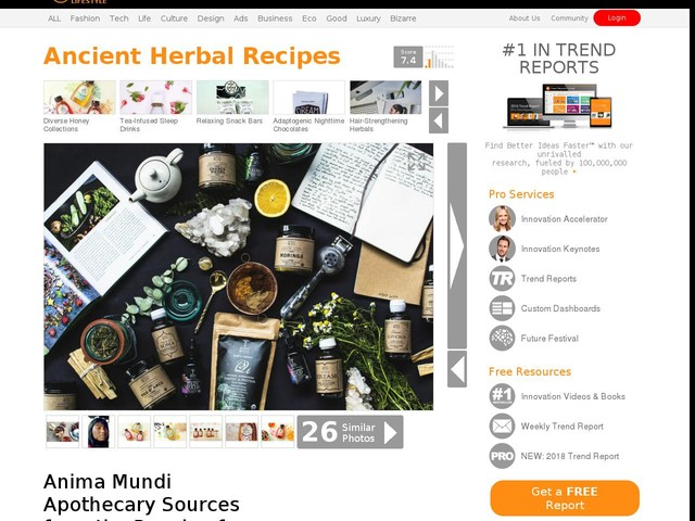 Ancient Herbal Recipes - Anima Mundi Apothecary Sources from the People of South and Central America (TrendHunter.com)