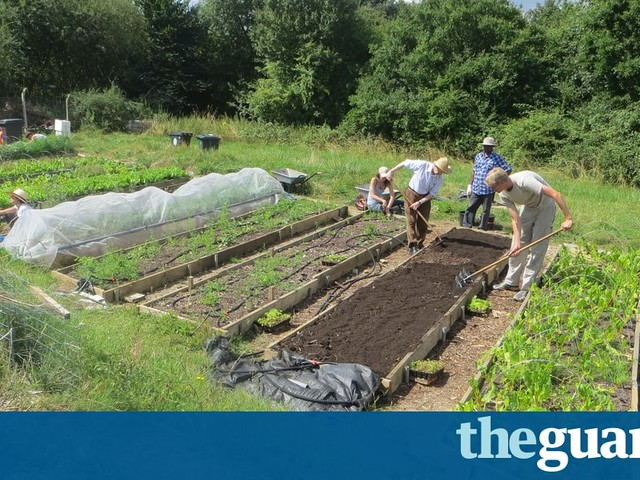 Carrots and communism: the allotments plotting a food revolution
