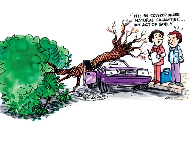 Car Insurance Renewal Comparison