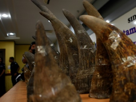 Rhino horn smugglers shift to jewellery: report